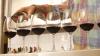 Wijn- en spijsproeverij Gall&Gall Bennekom